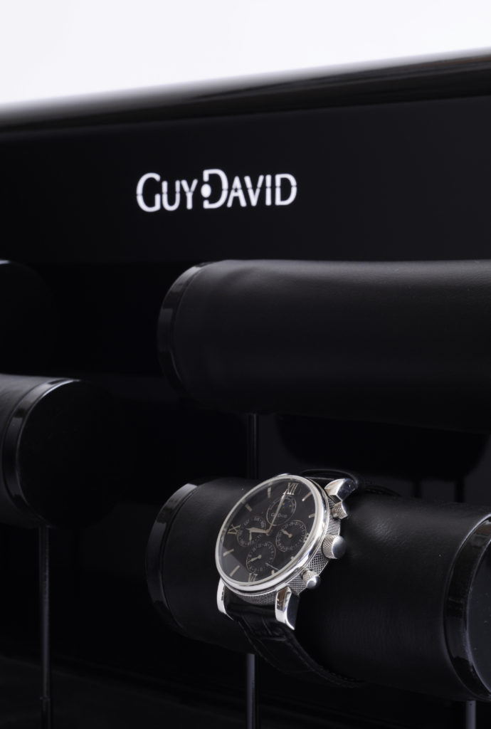 Guy David display